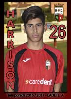 Harrison Andres