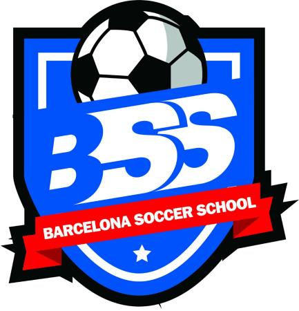 BSS-2008.SUB-12
